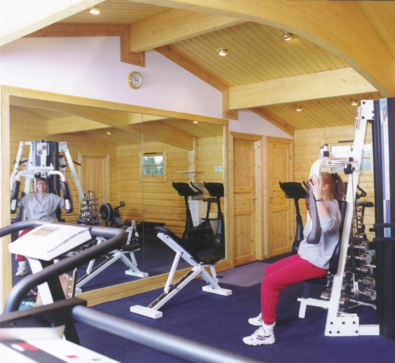 Luxury Home Gym: Home Gym Buildings