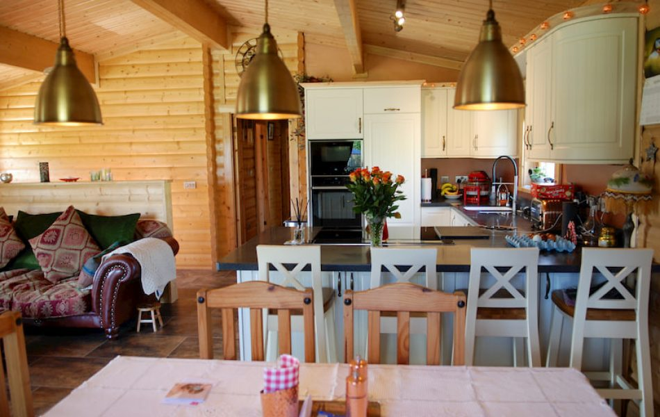 Traditional Log Cabin Interior 12